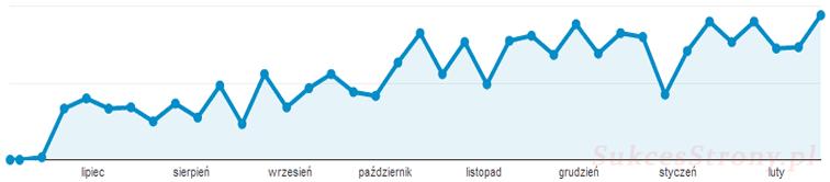 Wzrost ruchu na stronie internetowej