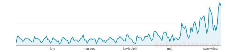 Wzrost ruchu na stronie www